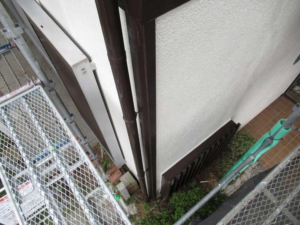 検査 雨樋 外壁
