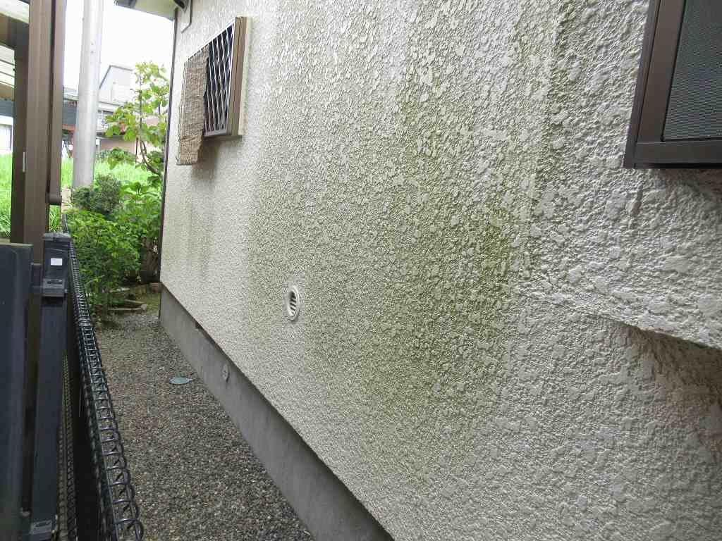 現場調査 外壁 汚染