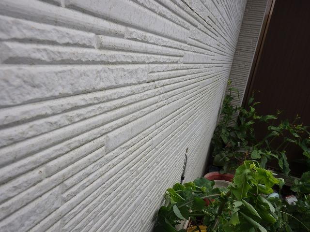 診断 外壁 窯業サイディング 汚染 劣化